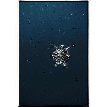 JUNIQE Print - Flying - Turtle Poster i blått och svart