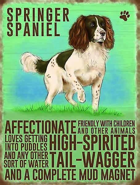 Medium Wall Plaque 200mm x 150mm - Springer Spaniel