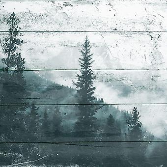 Niebla en el bosque Poster Print Mlli Villa