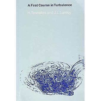 A First Course in Turbulence (A First Course in Turbulence)