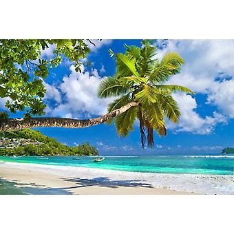 Tapete Mural Seychelles Palm Beach