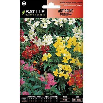 Batlle Dwarf Snapdragon Mixed (Garden , Gardening , Seeds)