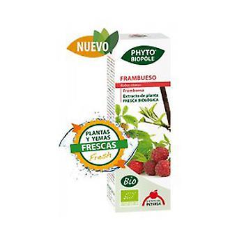 Phytobiopole Raspberry Bio (Hormone Regulator) 50 ml
