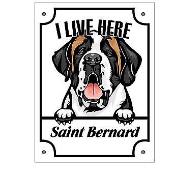 Plåtskylt Saint Bernard Kikande hund skylt