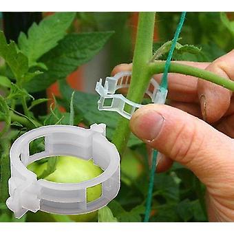 100 Stück wiederverwendbare Kunststoff-Pflanzenclips zur Unterstützung und Zum Anschluss zur Veredelung