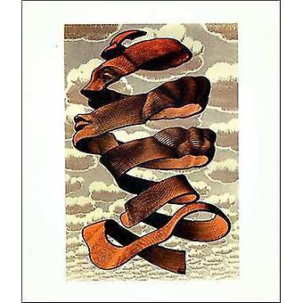 Casca Poster Poster Print by MC Escher