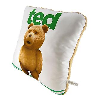 """Ted 14"""" Pillow w/ Sound"""