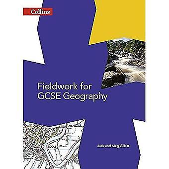 Feldarbeit für GCSE Geographie
