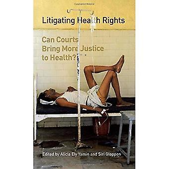 Prozessieren Gesundheitsrechte: Bringt Gerichte mehr Gerechtigkeit Gesundheit?
