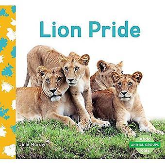Leeuw trots (dierlijke groepen)