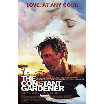 O poster original do cinema do jardineiro constante (dobro tomado o partido regular)