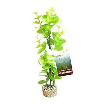 Sydeco Bioaqua Eucalyptus H.23Cm Sydeco (Poissons , Décoration , Plantes artificielles)