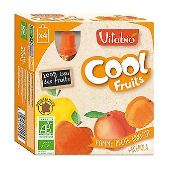 Calabaza Frutas Frescas Manzana Melocotón Albaricoque ORGÁNICO 4 unidades de 90g