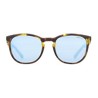 Red Bull Spect Steady Sunglasses - Havanna