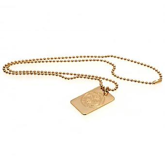 Celtic Gold Plated Pendant & Chain DT