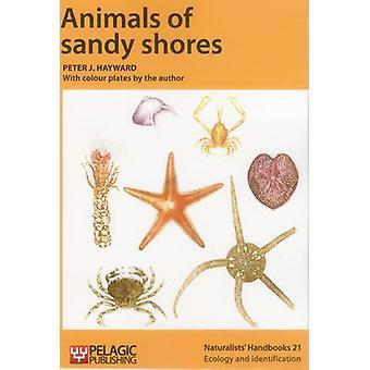 Animals of Sandy Shores by Peter J. Hayward - Peter J. Hayward - 9781