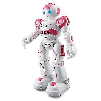 Rc Robot Akıllı Programlama Uzaktan Kumanda, Robotik Oyuncak, Biped İnsansı