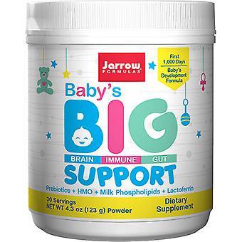 Jarrow Formulas Baby's الدعم الكبير، 4.3 Oz