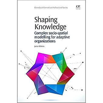 Shaping Knowledge: Complex Socio-Spatial Modelling for Adaptive Organizations (Chandos Information Professional...