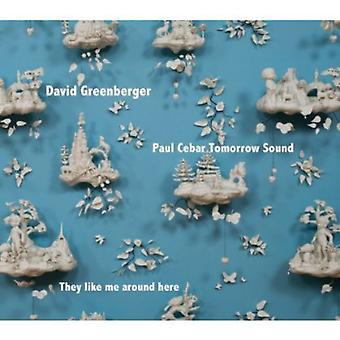 David Greenberger & Paul Cebar Tomorrow Sound - They Like Me Around Here [CD] USA import