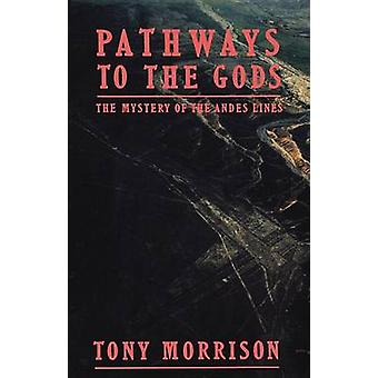 Pathways to the Gods - The Mystery of the Andes Lines (Open market ed)