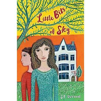 Little Bits of Sky by S E Durrant - 9780823438396 Book