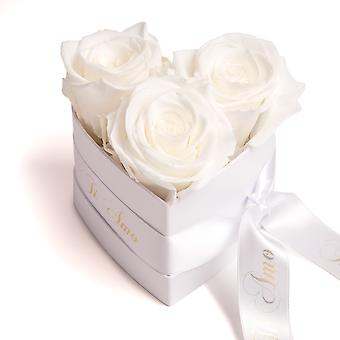 Ti Amo Roses Heart Box 3 Eternal Roses in Beige Durable 3 Years