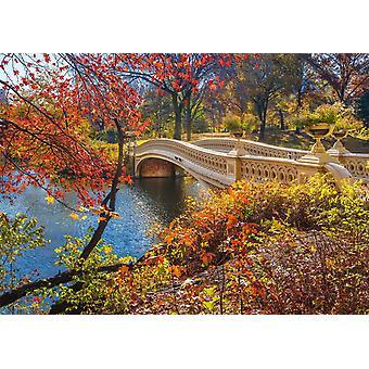 Schmidt A passeggiata attraverso Central Park, New York Jigsaw Puzzle (1000 pezzi)