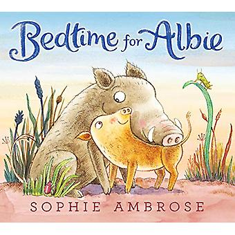 Bedtime for Albie by Sophie Ambrose - 9781406386226 Book