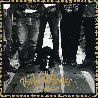Wallflowers - Wallflowers [CD] USA import