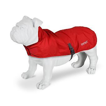 ريجاتا باكواي البوليستر شبكة بطانة معطف الكلب