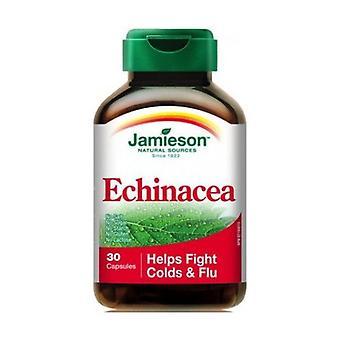 Echinacea Root 30 capsules