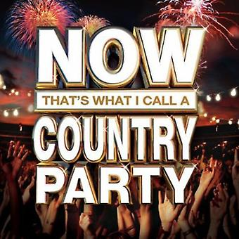 Nun, das ist ein Country-Party - nenne ich nun, das nenne ich einen Country Party [CD] USA import