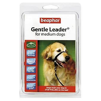 Beaphar Gentle Leader Head Collar