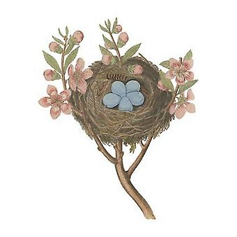 Antique Birds Nest I Poster Print by James Bolton (8 x 10)