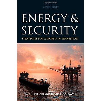 Energy and Security - Strategies for a World in Transition (2nd Revise