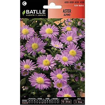 Batlle Alpine Aster (Garden , Gardening , Seeds)