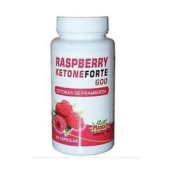 Raspberry Forte 600 Keton 60 capsules