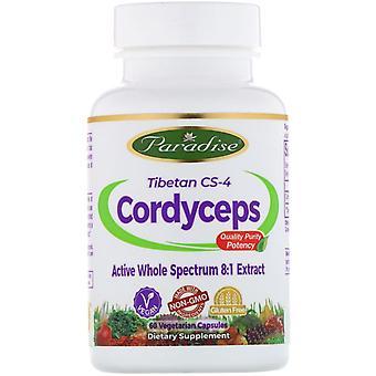 Paradise Herbs, Tibétain CS-4 Cordyceps, 60 Capsules Végétariennes