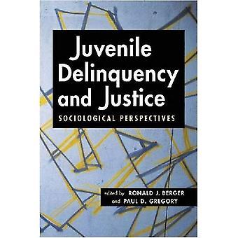 Jeugddelinquentie en rechtvaardigheid: sociologische vooruitzichten