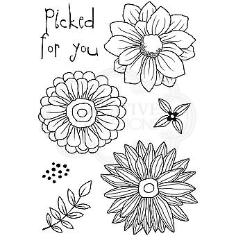 Woodware Picked For You Clear Stamp Set