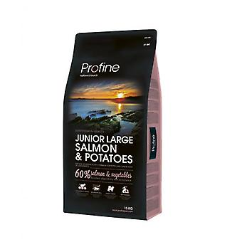 Profine Junior Large Salmon (Dogs , Dog Food , Dry Food)