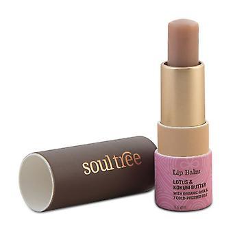Lipstick 3,5 g