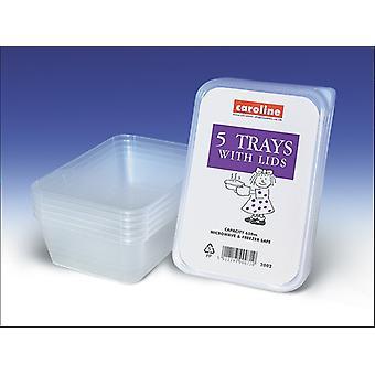 Caroline Plastic Tubs With Lids 650ml x 5 2002
