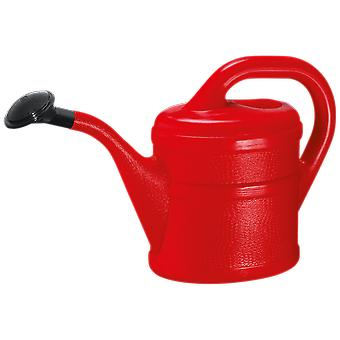Watering approximately 2 Litre. Red