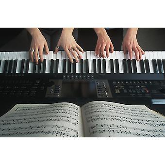 Hände auf der Tastatur PosterPrint