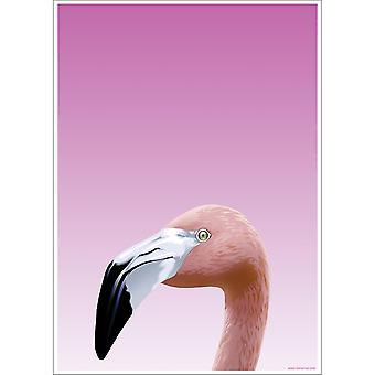 Inquisitive Creatures Flamingo Poster
