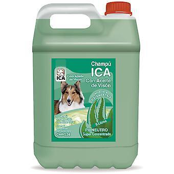 Ica Nerzöl Shampoo 5 Lts Aloe Vera (Hunde , Fell und Hygiene , Shampoos)