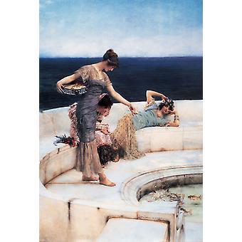 Favoritos de Plata, Alma-Tadema Sir Lawrence, 69,1 x 42,2 cm