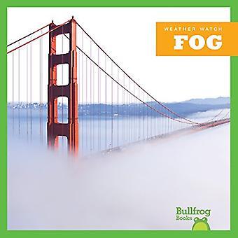 Brouillard (veille météorologique)